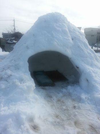 大雪(T_T)