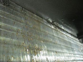 川崎市内 ドラックストア エアコン洗浄の様子