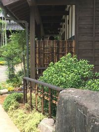 黒竹で竹垣