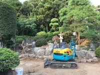 流行りの庭