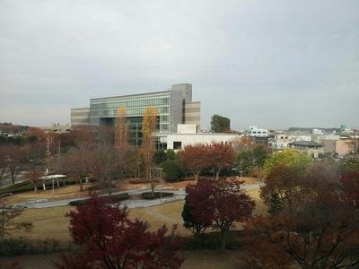 まだまだ秋の景色です。