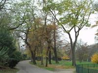11月30日(日) ブローニュの森 Bois de Boulogne