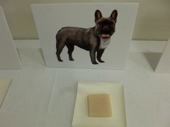 犬の石けん作りの検定
