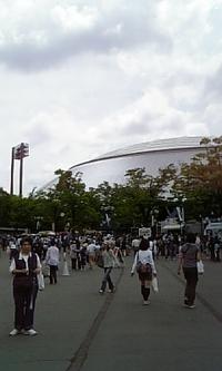 久々の野球観戦です♪ 2009/05/04 13:31:54
