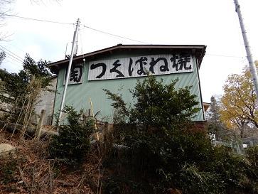 筑波山梅林2つの秘話(2)~筑波山梅林より古い隣接の梅の林
