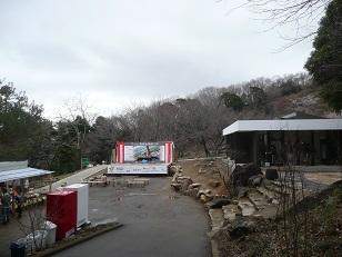 筑波山梅林 梅まつり 2015年3月8日