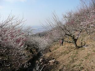 シリーズ「筑波山名跡誌に書かれた場所を訪ねて」(5)観流庵(後編)
