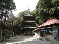 茨城の古刹の三重塔~後篇~早春の富谷観音(小山寺)を訪ねて