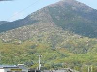 筑波山南麓 なごりのヤマザクラと、見頃のヤマツツジ・ヤマブキ