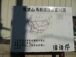 シリーズ「筑波山名跡誌に書かれた場所を訪ねて」 (7) 橘川・迎来橋(後編)