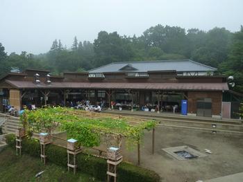 ボラ募集【8/16-19】筑波山の麓でゆっくら夏休み