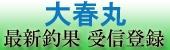 2017/03/29  晴れ 茨城鹿島港「大春丸」ヤリイカ船釣果情報