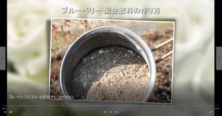 【動画特集5】ブルーベリーマイスターに肥料やリの方法を教わった!