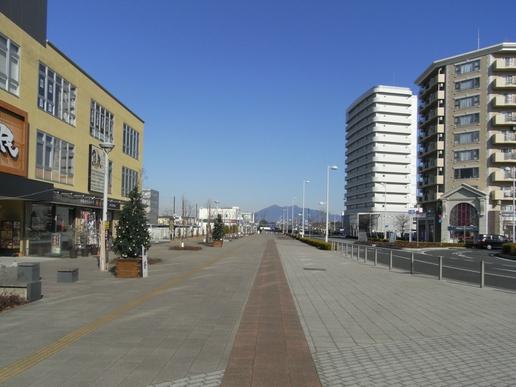 駅前ストリート(2012年1月8日撮影)