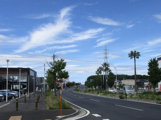 【今昔05】新都市中央通りをつくばから研究学園へ向かう。店ができ木も大きくなった!