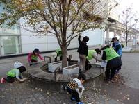 研究学園駅前に花を植え華やかになりました!(11/11秋の植替え)