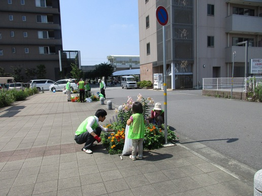 研究学園駅前花壇をきれいに・・・そしてデリシャスな差し入れが!