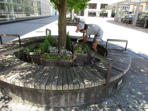 夏休みとともに研究学園駅前花壇の水やりが水遊び場に??