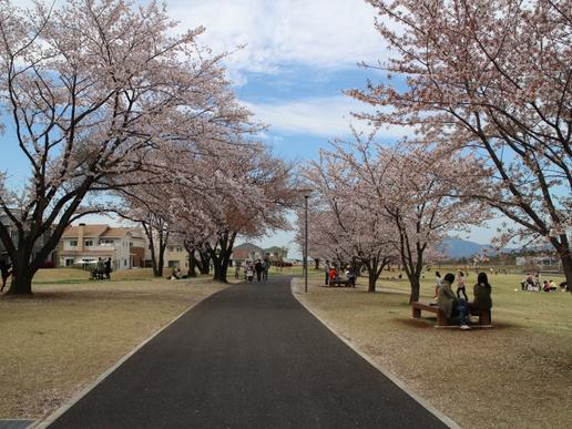 研究学園駅前公園や学園の杜公園等、研究学園周辺の大規模公園はそれぞれ個性があった!