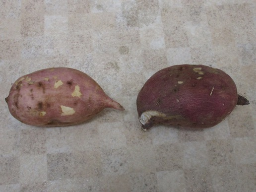 マツコの知らない世界で紹介された「魔法の焼きいも鍋」を使い採れたての安納いもの焼き芋を作りました!