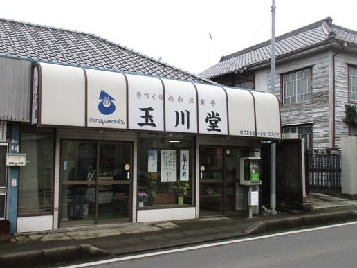 つくばの和菓子屋さん「玉川堂」120年も続く老舗でした!