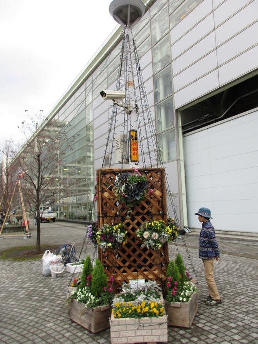 研究学園駅前へイルミネーションを設置しました!今年のグリーンの会のイルミネーションは豪華です!