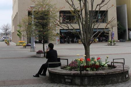 研究学園駅前公園向いの「タネのタキイ」さんからたくさん球根いただきました!