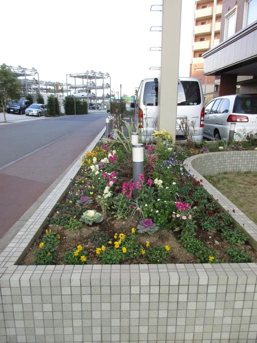 園芸ソムリエに学ぶ「花で彩るまちなみづくりセミナー」参加者募集!