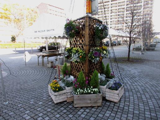 研究学園駅前イルミネーションの花を春まで咲かせ続けるには!そしてゴミが無い私たちの街「研究学園」へ!