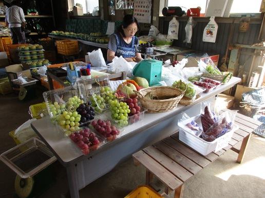 【つくば山麓の果物狩り】9月下旬、筑波山麓の千代田はぶどう、なし、くり等旬の果物でいっぱいです!