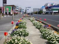どん亭やアクセスムーン辺りの歩道が素晴らしくきれいです!