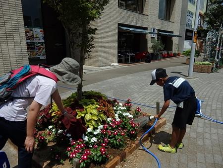 子供達と一緒に駅前の花へ水やりしました!