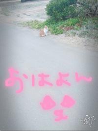 明日はお休みです\(^o^)/