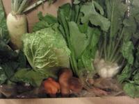 おいしいお野菜。