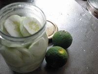 摘果レモン利用2