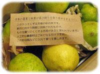 自然農法のレモン