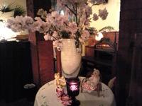 クマ達による夜桜の会