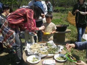 雑木林で遊ぶ会【共催団体の紹介】