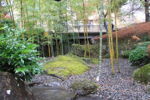 バスツアー「紅葉の苔庭と箱根の秋・箱根ホテルのランチ」その2