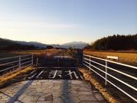 りんりんロード 2014/01/12 12:36:59