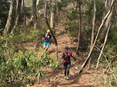 山櫻を楽しむ桜川トレイルラン