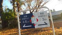 東京キタマラソン 2013/12/11 13:54:41