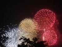昨日は東京湾大華火祭に