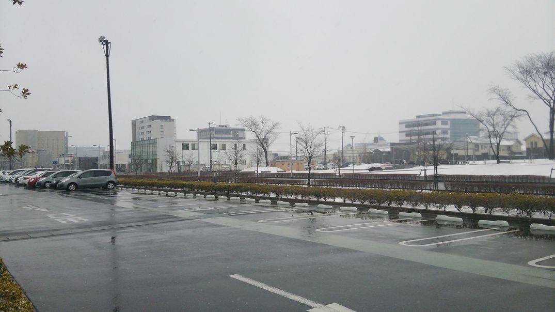 研究学園 久々につくばが大雪だ!