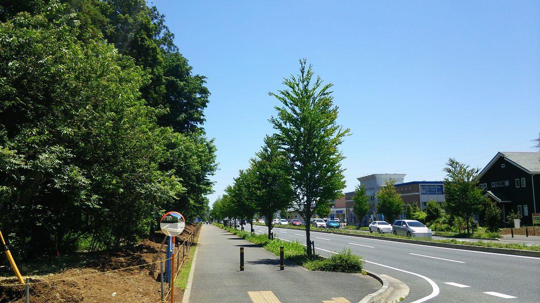 研究学園 天気が良くて気持ちよい 2014 春