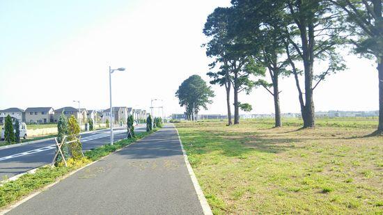 研究学園 葛城西線沿いの松の木と道路の間の空間はなんだ?
