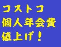 研究学園 コストコ個人年会費値上げ!!