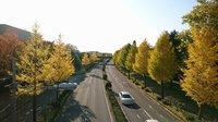 つくば秋の風景2017@筑波大学