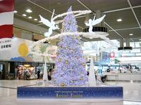 クリスマス特集 成田空港 出発ゲートのクリスマスツリー