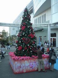イーアスつくば クリスマスツリー!
